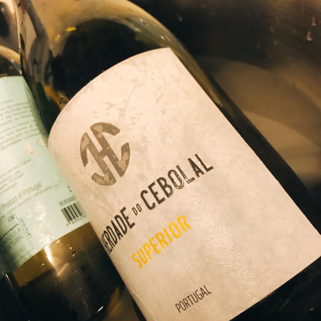 Enóphilo Wine Fest Coimbra