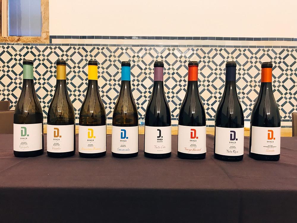 Douro e as suas castas - Vinilourenço