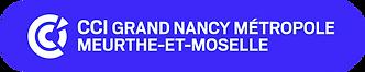 logo-ccit54-2021-2.png