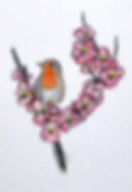 09-RobinAndPeachBlossoms.jpg