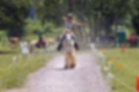 Arwen Adams on Prince Trot Junior2.jpg