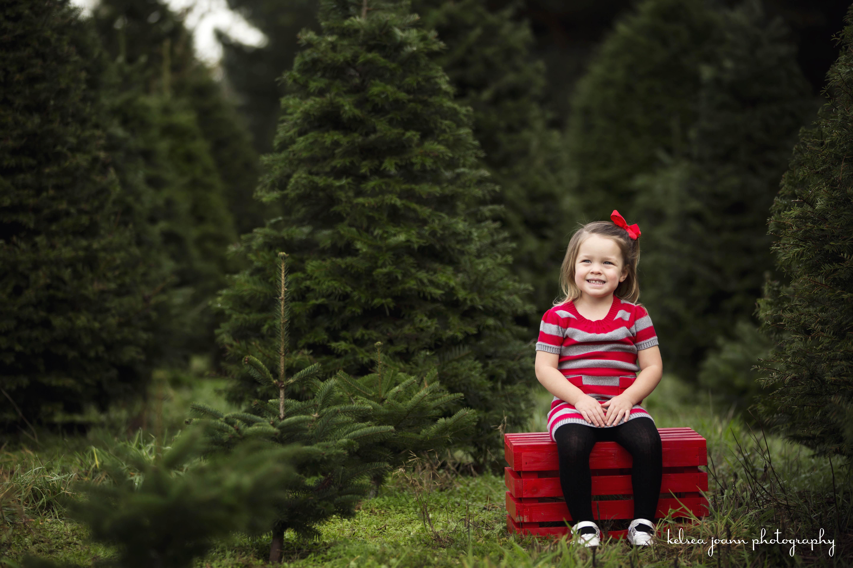 WMChristmas Tree Farm Minis 832.jpg