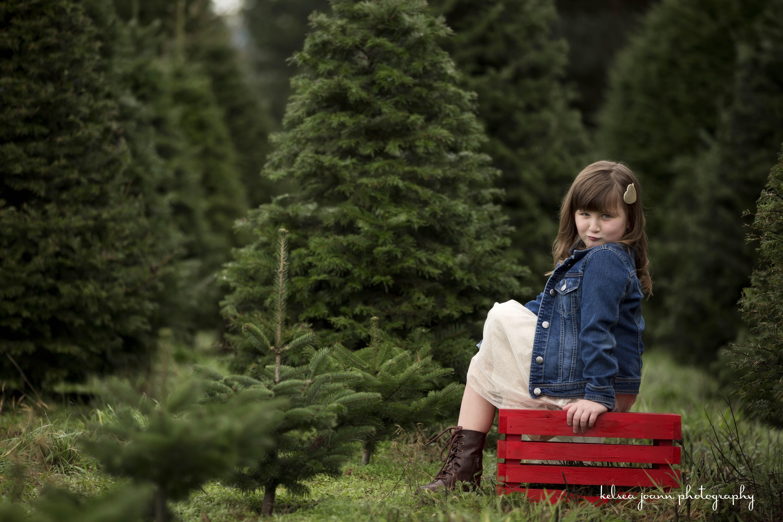 WMChristmas Tree Farm Minis 628.jpg