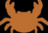 crabe-transp-brun.png