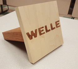 Welle Joint