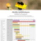 vignette abeilles polylectiques.png