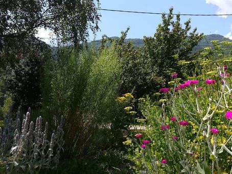 Hortus Fleur de Gaïa, bienvenue dans le réseau !