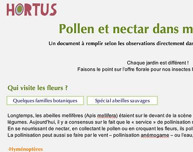 vignette pollennectar.png