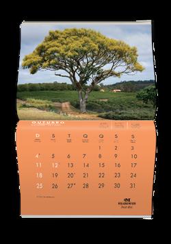 calendario03
