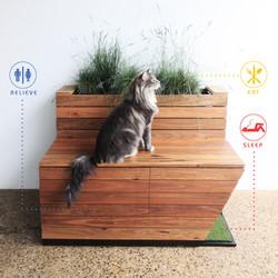 Meowhaus by Sawdust Bureau 00