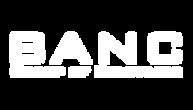 Banc Group Logo_2x.png