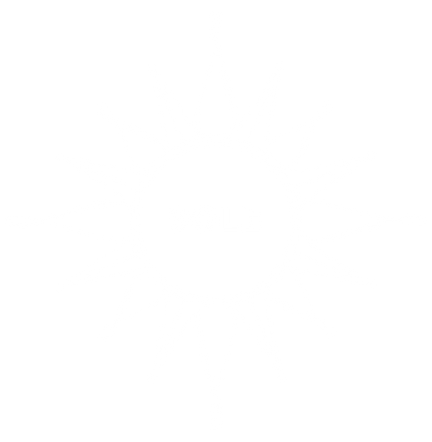 SOLE LOGO WHITE-02.png