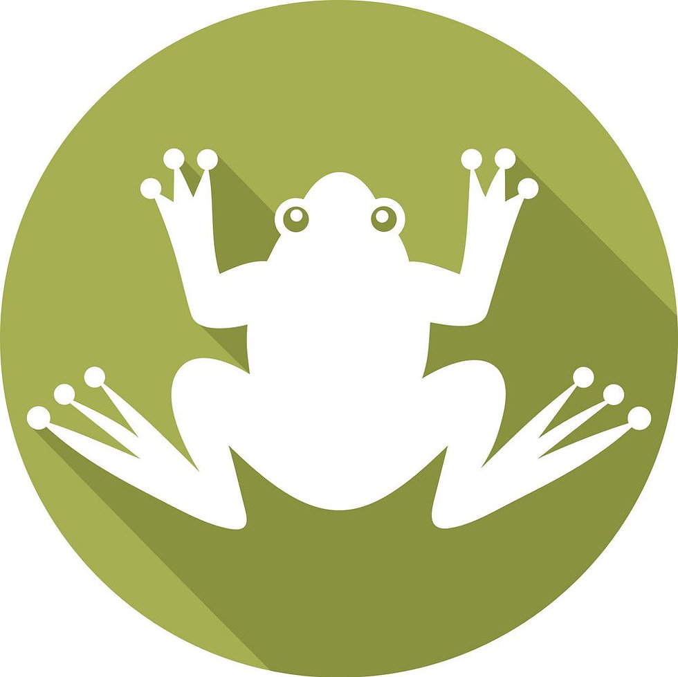 frog-icon.jpg