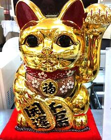 Hokkaido fish market mascot cat 2013-12-