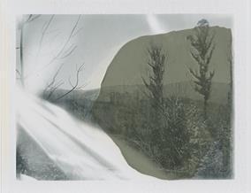 Polaroid#2