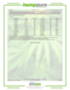 spiro full spec topical-page3.jpg