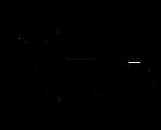 revolutionary brands logo black-01-01.pn