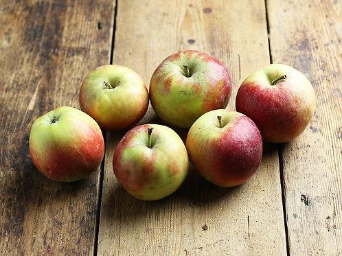 Organic Candine Apples (3 pieces)