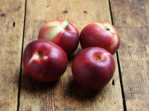 Organic Nectarines (3 pieces)
