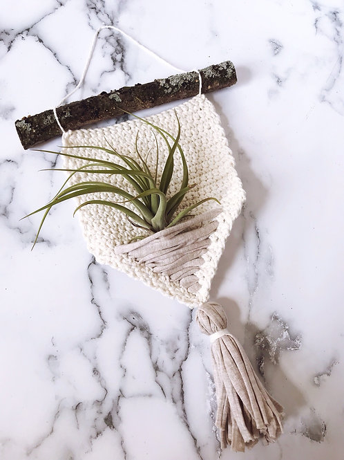 Air Plant Wall Hanging