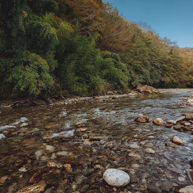 Сауна на реке в Сочи