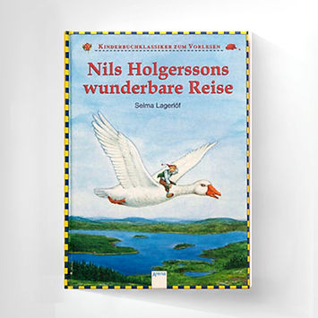 Book-Nils.jpg