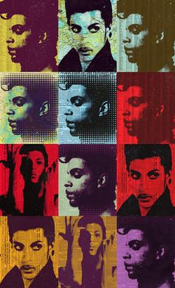 """Prince 40x65"""""""