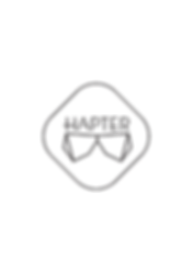 Hapter, official dealer Venezia Venice