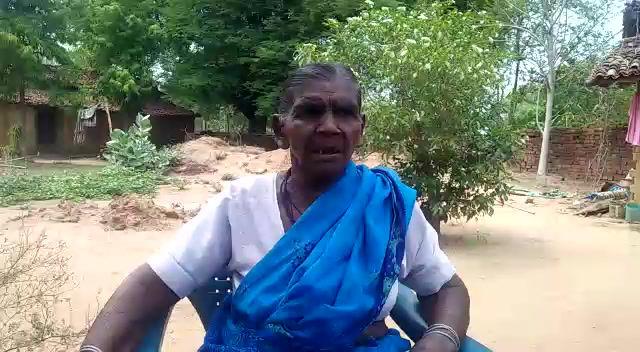 'भीमादेव की कहानी: आदिवासी जीवन में उम्मीद की एक कड़ी' - बलीराम