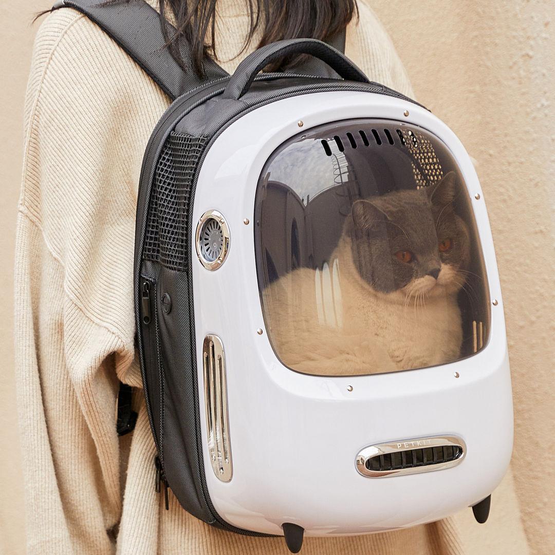 pet backpack.jpg