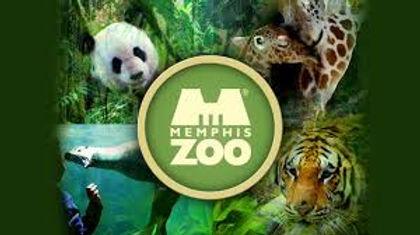 Memphis Zoo.jpg