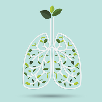 L'hygiène respiratoire