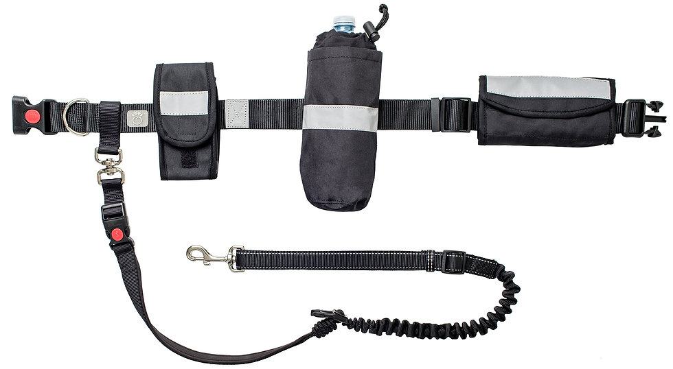 WAIST BELT & BUNGEE LEASH