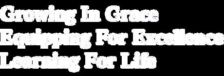 DCS Logo - Purpose_white3.png