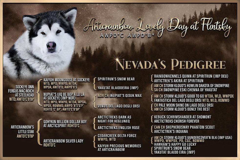 PEDIGREE-Nevada_4_GEN.jpg