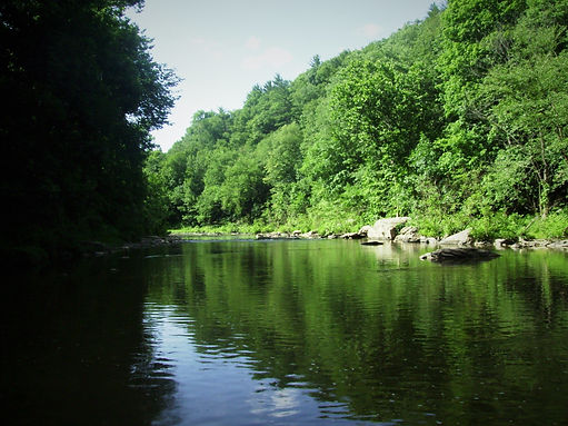 Fly Fishing in Central Pennsylvania