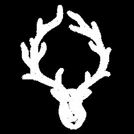 Birch-WIX-profile-logo.png