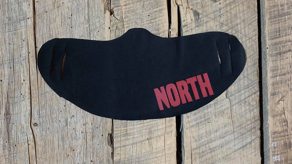 NORTH face mask