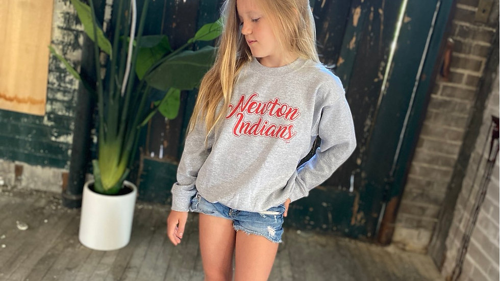 UNISEX ADULT & YOUTH RED NEWTON SCRIPT GRAY HEAVY COTTON  CREW NECK SWEATSHIRT