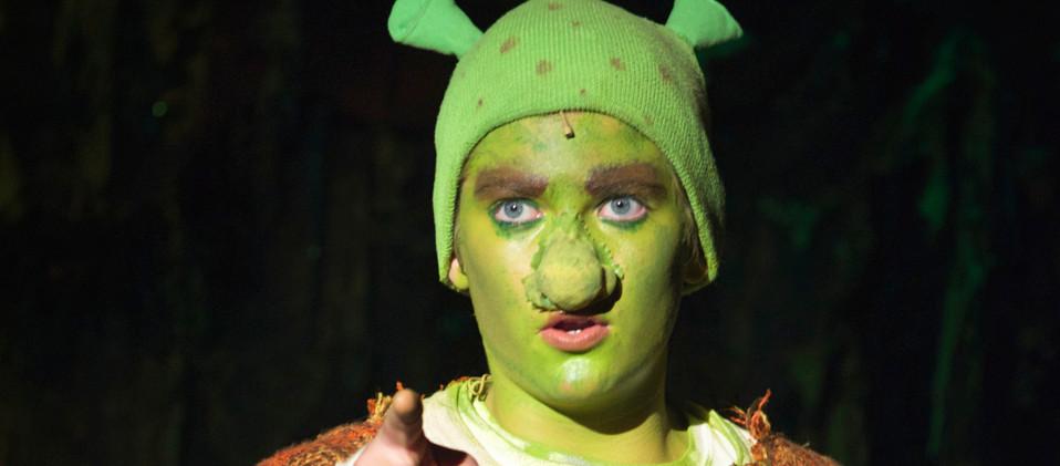 Shrek 2016-5.jpg