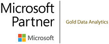 Gold Partner.jpg