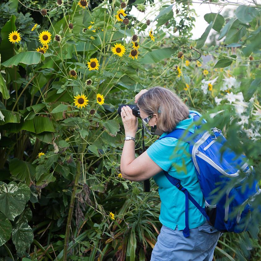 Beginning-Taking Better Photographs taught by Elizabeth Larson