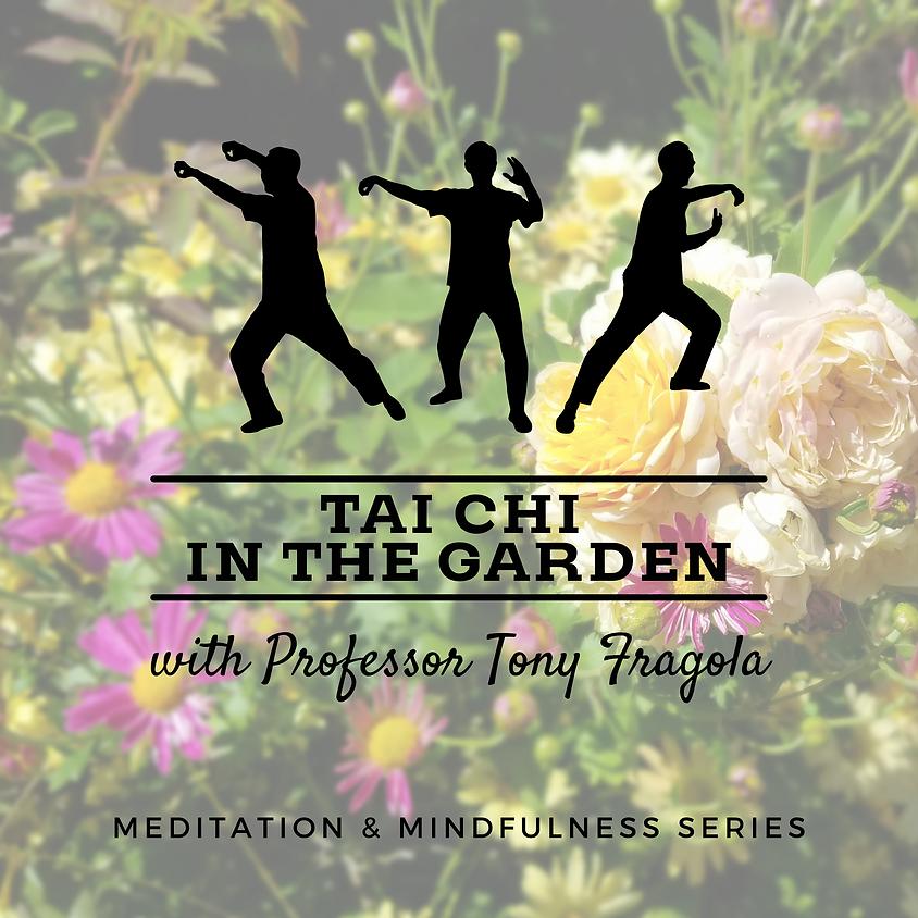 Tai Chi in the Garden