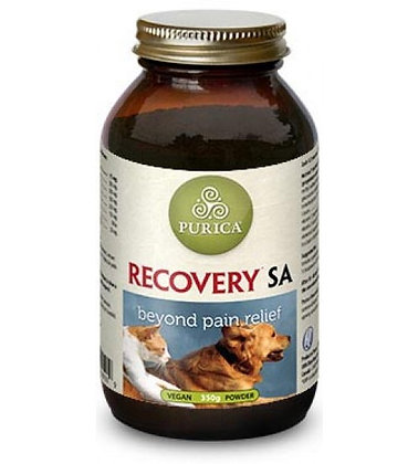 Recovery SA Canine-Feline