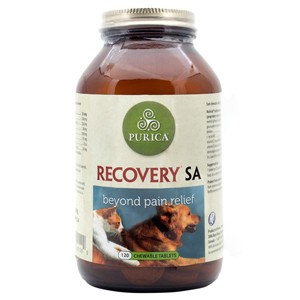 Recovery SA Chewable Tablets