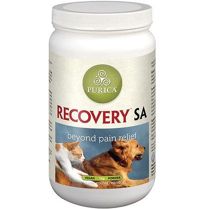 Recovery SA