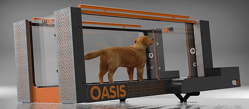 Oasis Underwater Treadmill