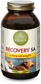 Recovery SA Extra Strength Chewable Tablets