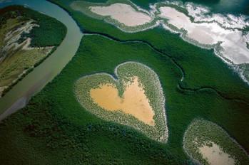 Yann Arthus-Bertrand revient sur Terre