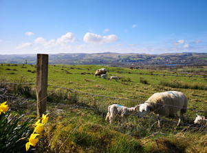 Enjoy a walk in the surrounding countryside